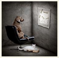 kuty2