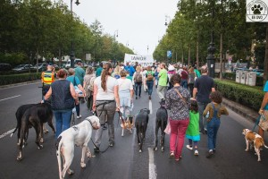 Kutyások felvonulása a Városligetért (2016. szeptember, forrás: EB OVO)