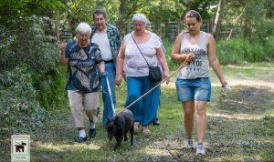 EB OVO nyugdíjas rekreáció